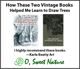How these two vintage books helped me learn to draw trees.