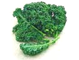 Curly kale greens used for making baked kale chips