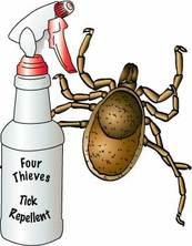 wood tick and spray bottle of insect repellent